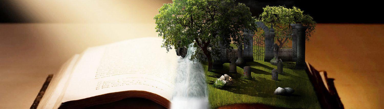 imagination Publishing Network
