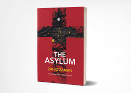 Asylum 3D Review of 'The Asylum' by Alice Shuttleworth
