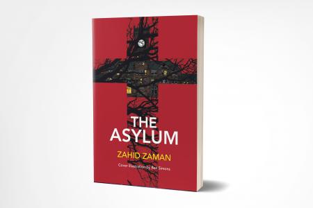 Asylum 3D 'The Asylum' by Zahid Zaman