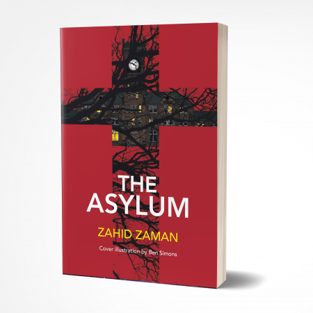 Asylum 3D 'The Asylum' by Zahid Zaman